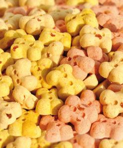 Pet Shop On line Fruit-Cookies-Sfuso