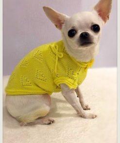 Pull estivo giallo