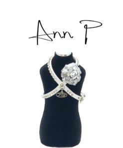 Pettorina Ann P