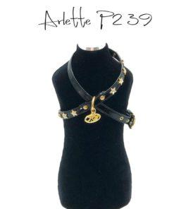 Pettorina Arlette P2 39