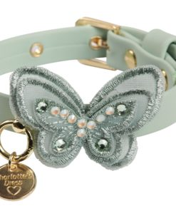 Collare cani Sweet Butterfly verde acqua