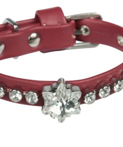 Collare cani Edelweiss rosso perla