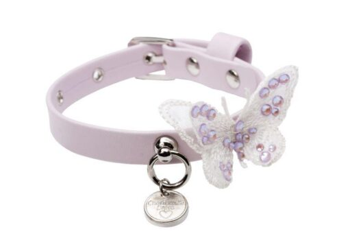 Butterfly in pink collare CD