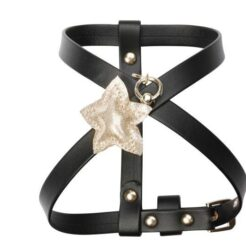 Little star pettorina nero